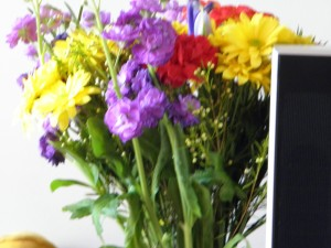 bunch of brightly coloured flowers
