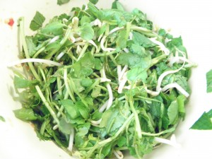 watercress salad without chicken
