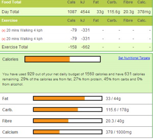 calorie counting screen from calorie king