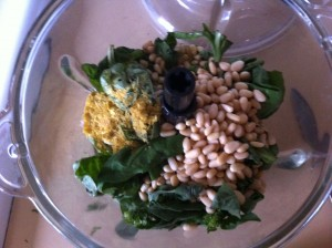 pine nuts basil garlic nutritional yeast etc