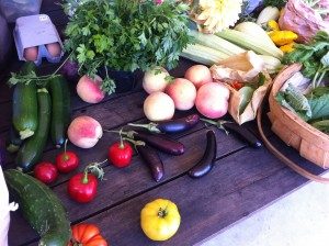 table laden with assortment of fresh vegetables