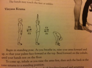 Diagram showing posture for standing forward bend