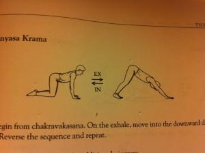 diagram posture Adhomukha Shvanasana - Downward Dog