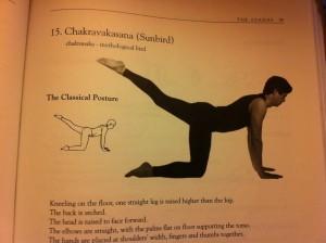 diagram posture - Chakravakasana - Sunbird