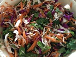 Shredded cabbag, carrot, bean shoots, mint and coriander